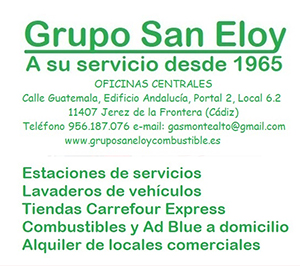 gruposaneloycombustible